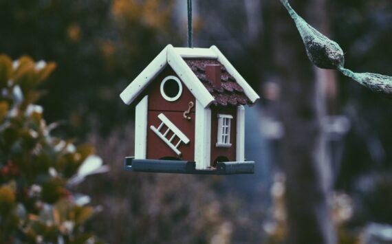 Wat een klein huis